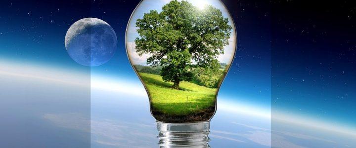 โคมไฟปลูกต้นไม้นวัตกรรมใหม่เพื่อให้ความสดชื่นสำหรับคนในเมือง